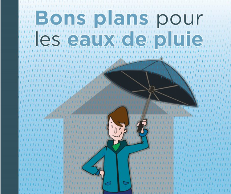 Webinaire sur la gestion des eaux pluviales - 01/06/2021